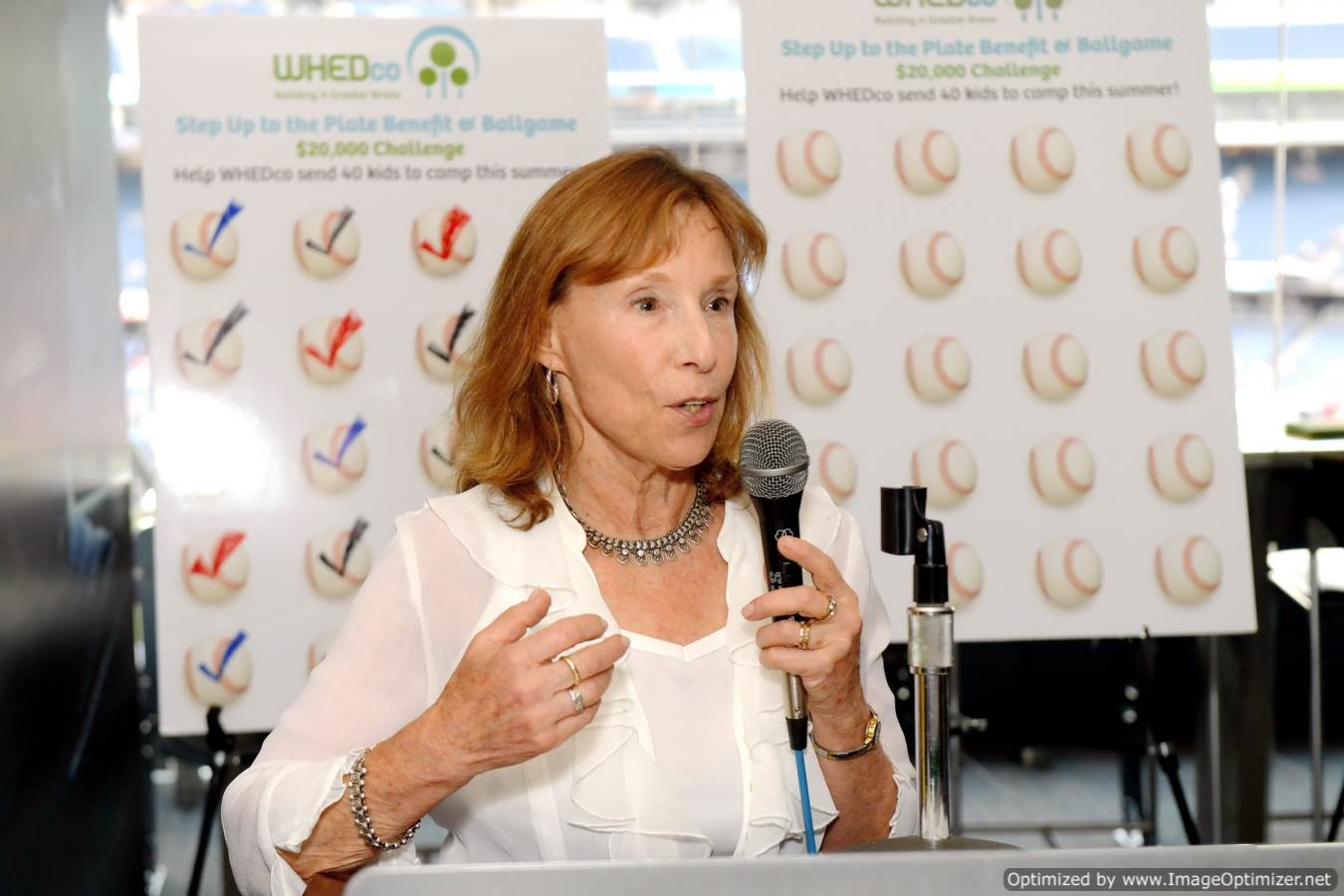 nancy biberman at benefit and ballgame 2016
