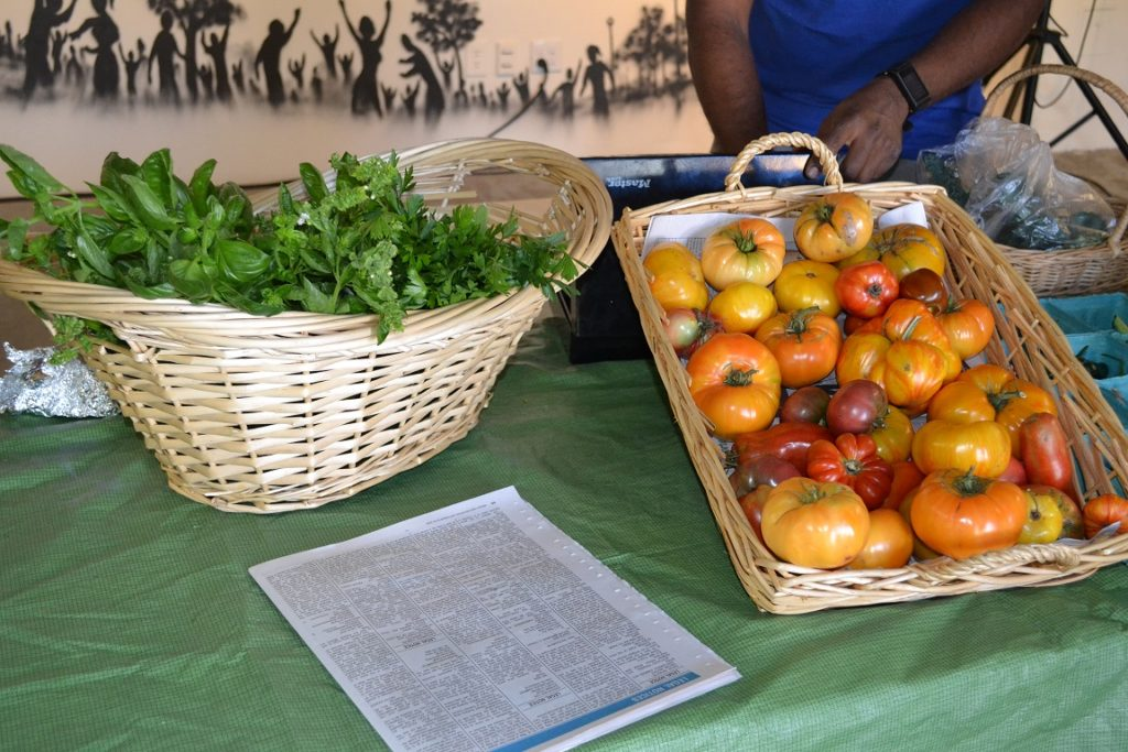 Pop-up market vendor at Bronx Summer Fest 2016.